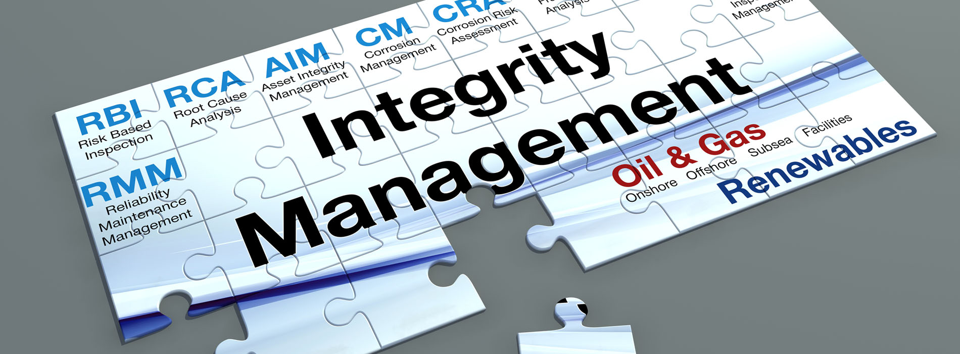 Integrity Management puzzle